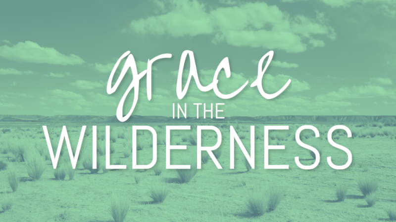 Grace in the Wilderness